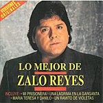 Zalo Reyes Una Lágrima En La Garganta (Single)
