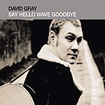 David Gray Say Hello, Wave Goodbye (Single)