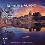 Philippe Bestion Les Seize Étapes De La Vie Naturelle: V. Respirer L'Aurore