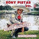 Vicente Fernández Sony-Pistas, Vol.1: Vicente Fernandez