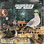Hujaboy Party Animals