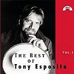 Tony Esposito Best Of Tony Esposito, Vol.1
