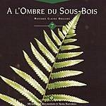 Olivier Renoir A L'Ombre Du Sous-Bois