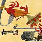 Zebrahead Anthem/Riot Girl