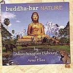 Arno Elias Buddha-Bar: Nature