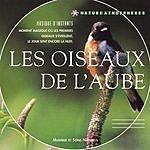Philippe Bestion Les Oiseaux De L'Aube