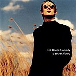 The Divine Comedy A Secret History: The Best Of The Divine Comedy