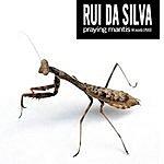 Rui Da Silva Praying Mantis