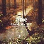 Liam Singer Our Secret Lies Beneath The Creek