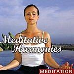 William Paterson Meditative Harmonies
