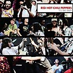 Red Hot Chili Peppers Tell Me Baby/A Certain Someone