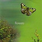 Keco Brandão Music & Nature Series: Vol.3, Forest
