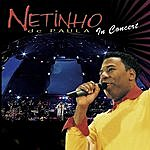 Netinho De Paula Netinho In Concert (Live)