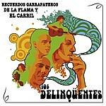 Los Delinqüentes Recuerdos Garrapateros De La Flama Y El Carril