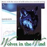 David Sun Wolves In The Wind