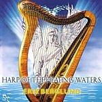 Erik Berglund Harp Of The Healing Waters