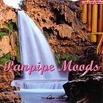 Michel Bestrin Panpipe Moods