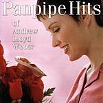 Michel Bestrin Panpipe Hits of Andrew Lloyd Weber