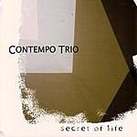 Contempo Trio Secret Of Life
