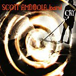 Scott Amendola Band Cry