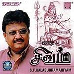 S. P. Balasubramaniam Sivam
