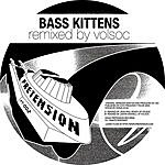 Bass Kittens Another Day/Silent Running (Maxi-Single)