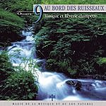 Vincent Bruley Oxygène 9: Au Bor Des Ruisseaux