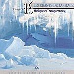 Vincent Bruley Oxygène 16: Les Chants De La Glace