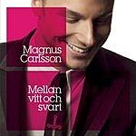 Magnus Carlsson Mellan Vitt Och Svart (Single)