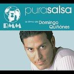 Domingo Quinones Pura Salsa: Domingo Quinones