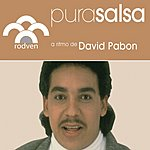 David Pabon Pura Salsa: David Pabon