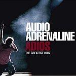 Audio Adrenaline Adios