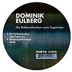 Dominik Eulberg Die Rotbauchunken Vom Tegemsee (Single)