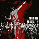 Reamonn Angels Fly (3 Track Maxi-Single)