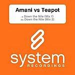 Amani Down The Nile (2-Track Single)
