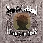 Out Of Phase Acoustic Ladyland: A Tribute To Jimi Hendrix