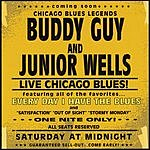 Buddy Guy Every Day I Have The Blues (Live)