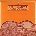 Raul Garcia Guitarra Peruana