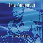 Trio Cocomarola Coleccion Aniversario