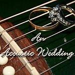 Jonathan Firey Wedding Album