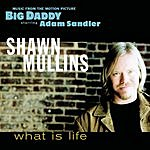 Shawn Mullins What Is Life (Maxi-Single)