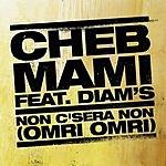 Cheb Mami Non C'sera Non (Omri Omri) (Single)