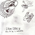 Liam Lynch How To Be A Satellite