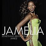 Jamelia Something About You (5 Track Maxi-Single)