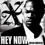 Xzibit Hey Now (Mean Muggin) (Clean Version) (Single)