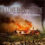 A Love Ends Suicide In The Disaster