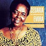 Cesaria Evora Les Indispensables