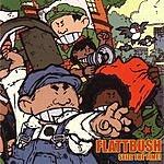 Flattbush Seize The Time