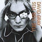 David Gray Sell, Sell, Sell