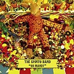 The Spinto Band Oh Mandy (Demo Version)